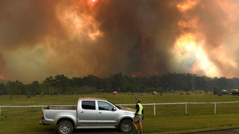 60 mil norr om Sydney har branden börjat sprida sig allt närmare storstaden.