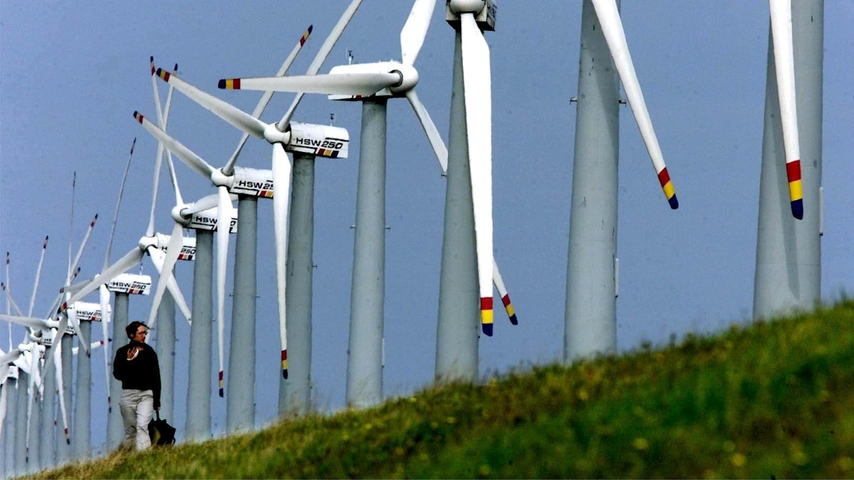 En kvinna på promenad nedanför en mäktig rad av vindkraftverk i norra Tyskland. Hon har ljusa byxor, mörk jacka, mörk väska och mörkt hår. De vita propellerbladen är målade med de tyska färgerna röd, gul och svart längst ut i ändarna. Himlen är blå och gräset är grönt.