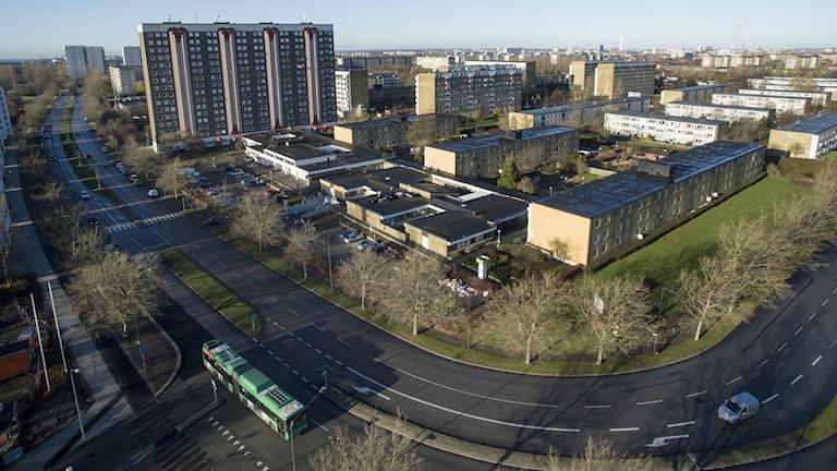 Bilden är en flygbild över området Lindängen i Malmö. Man ser bland annat höghuset Motetten och en grön stadsbuss. Foto: Johan Nilsson/TT.