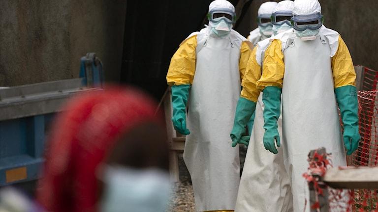 Ebola-hälsocenter i Beni, Kongo (arkivbild). Foto: Jerome Delay/TT.