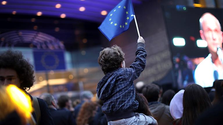 Publik tittar på valvaka i Bryssel