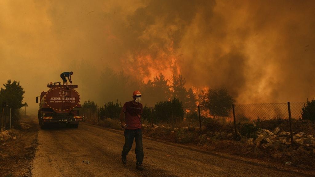 Skogsbränder i södra Turkiet