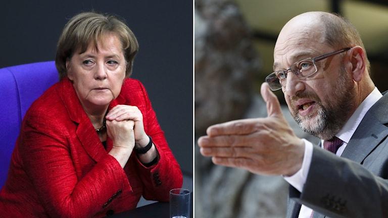 Merkel och Martin Schulz