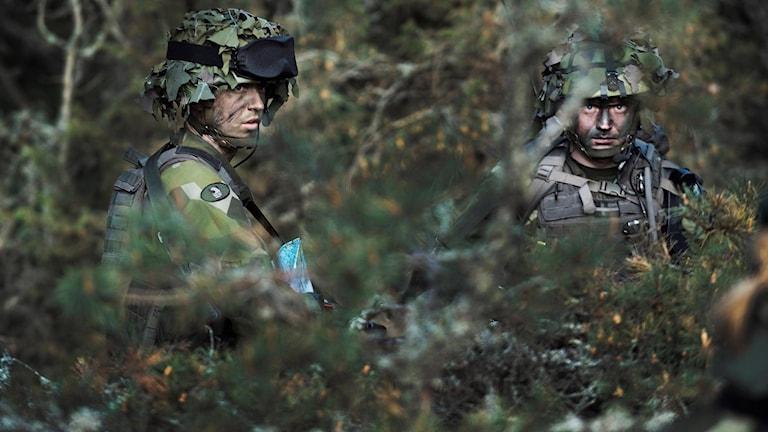 Två soldater i skogen.