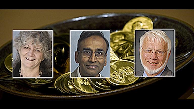 Ada Yonath, Venkatraman Ramakrishnan och Thomas Steitz delar på priset. Foto: Michael Marsland/Yale University/Micheline Pelletier/Corbis samt Scanpix. Montage: SR.