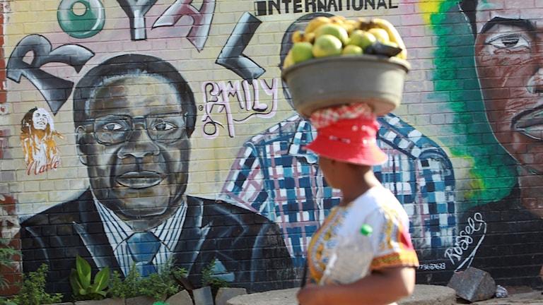 Zimbabwe, Mugabe.