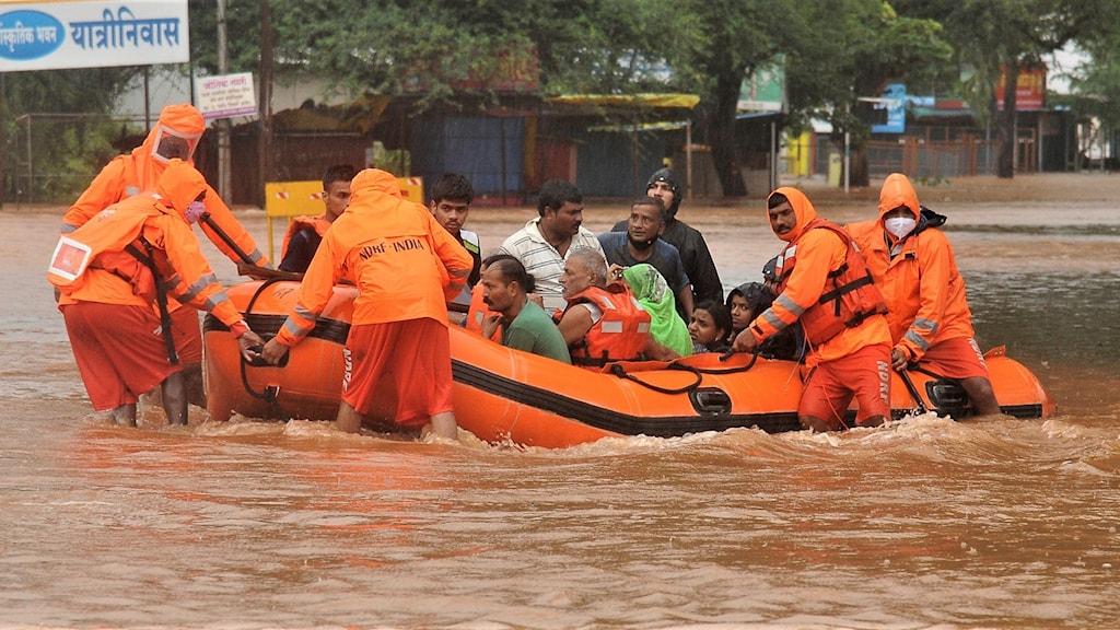Monsunregn i Indien