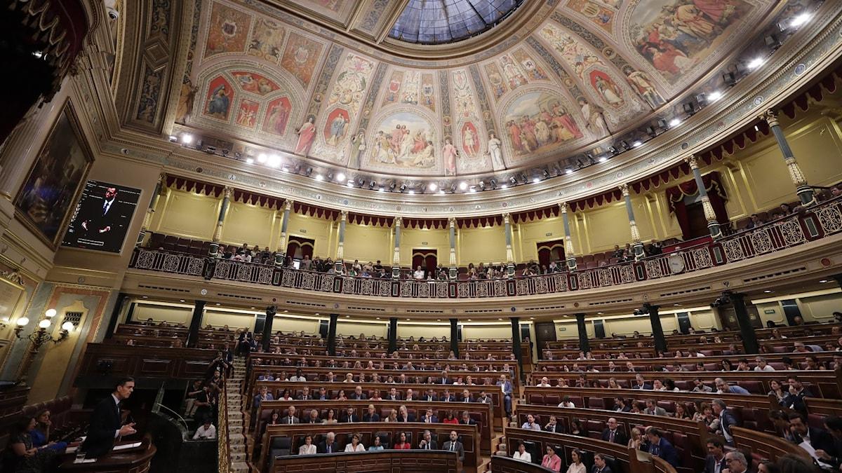 Pedro Sanchez pratar inför parlamentet den 23 juli.