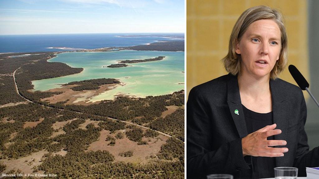 Montage av Bungeviken på Gotland och miljöminister Karolina Skog.