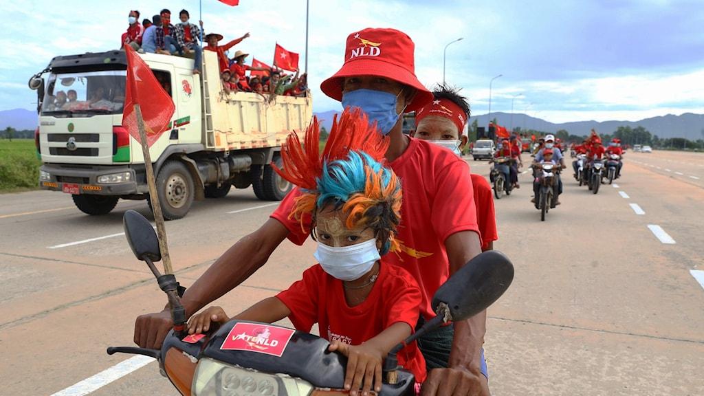Valturne i Myanmar