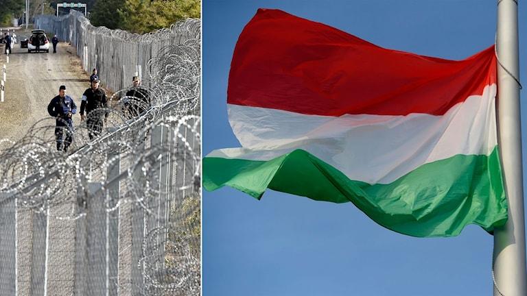 Delad bild: Gränsstaket med vakter och en ungersk flagga