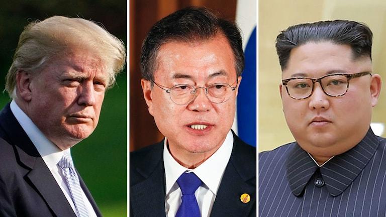 Donald Trump, Moon Jae-in och Kim Jong-Un.