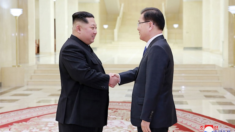 Kim Jong Un skakar hand med chefen för den sydkoreanska delegationen, Chung Eui-yong.