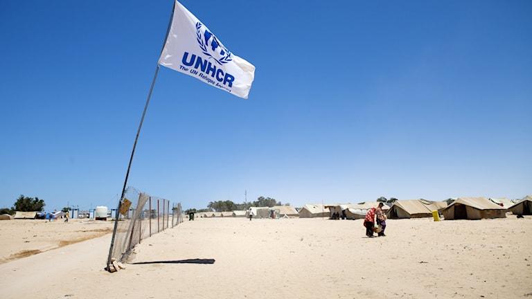 FN:s flyktingorgan UNHCR i ett flyktingläger i Tunisien.
