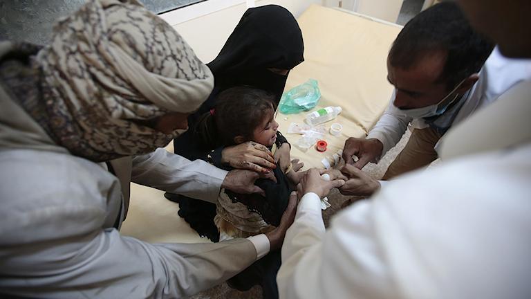 kolera, jemen