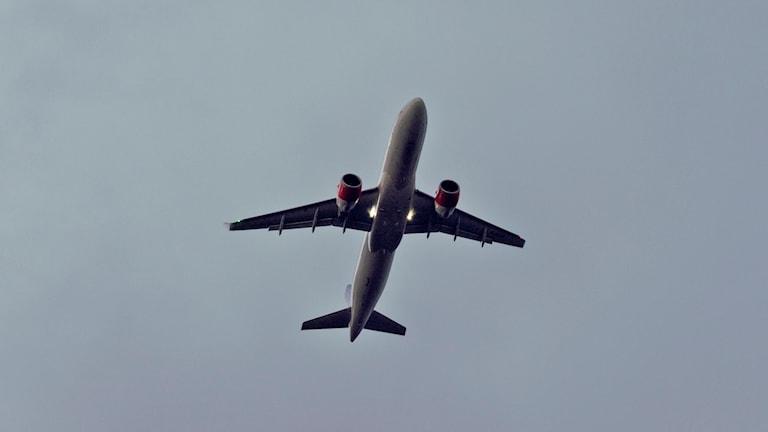 Den undre delen av ett flygplan syns från marken.