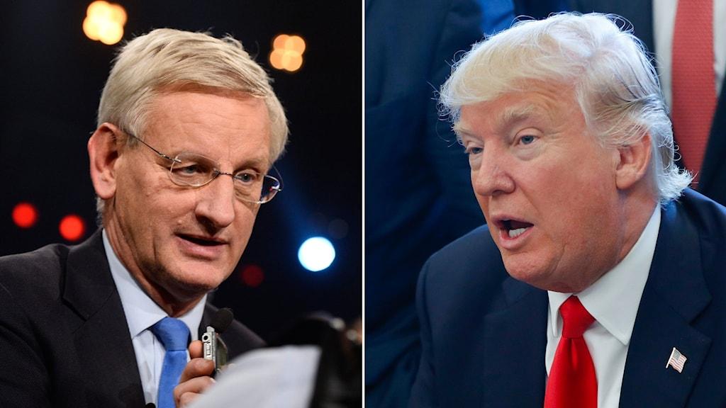 Sveriges förre utrikesminister Carl Bildt och USA:s president Donald Trump.