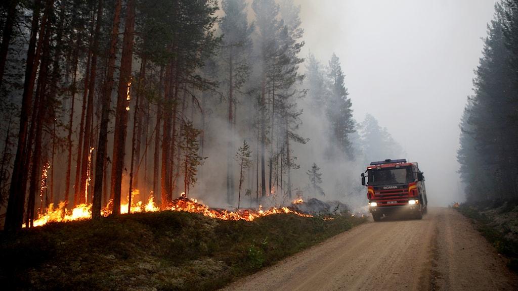 Skogsbranden vid Kårböle sommaren 2018.