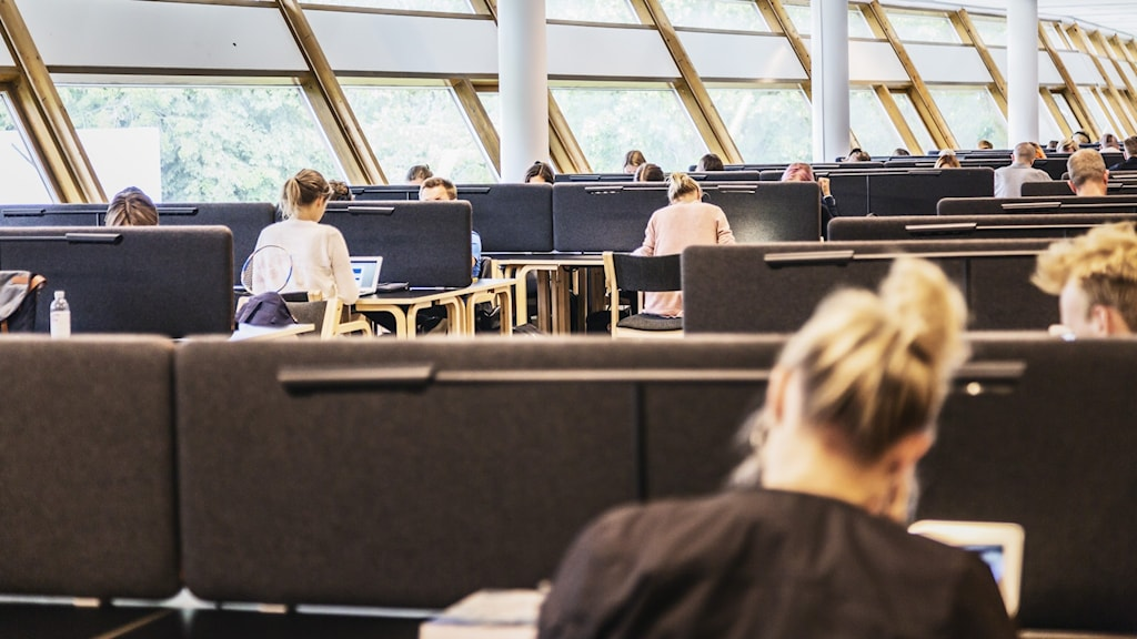 Studenter sitter avskilda av skärmar i läsesal.