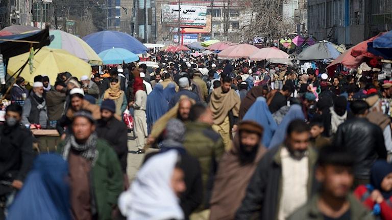 I Afghanistan inleddes vid midnatt en veckas nedtrappning av våldet i landet.