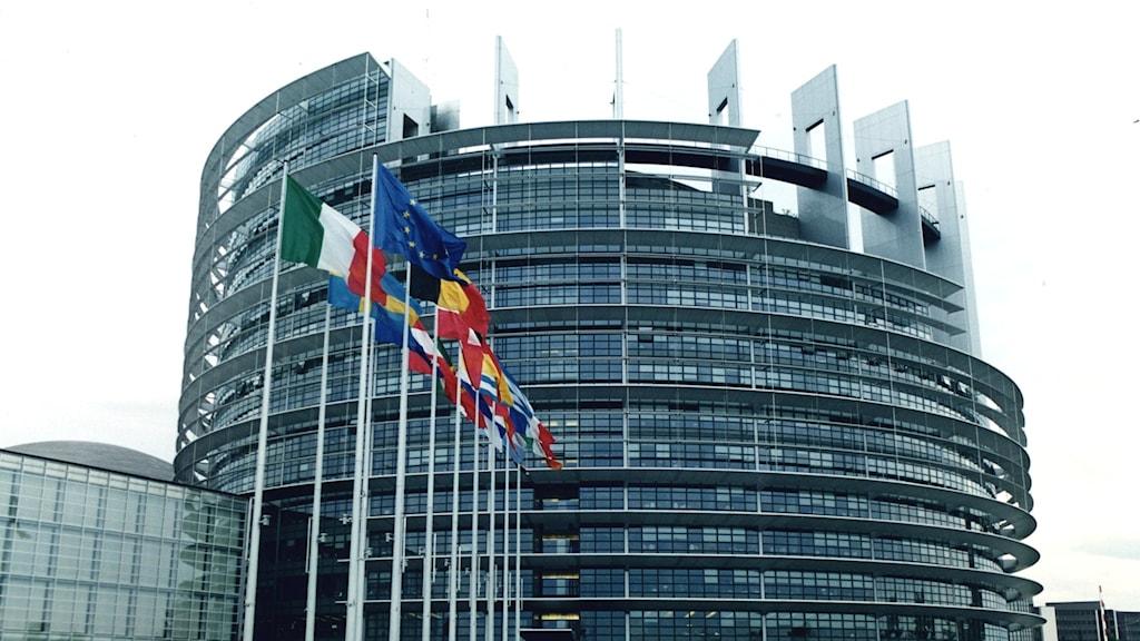 EU-parlamentet i Bryssel med flaggor utanför.