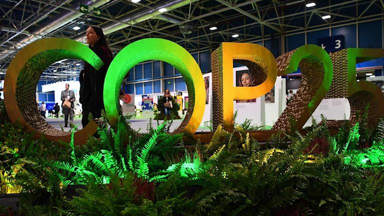 FN:s stora klimatmöte kallas COP25. Det är för att det är det 25:e mötet om klimatet.