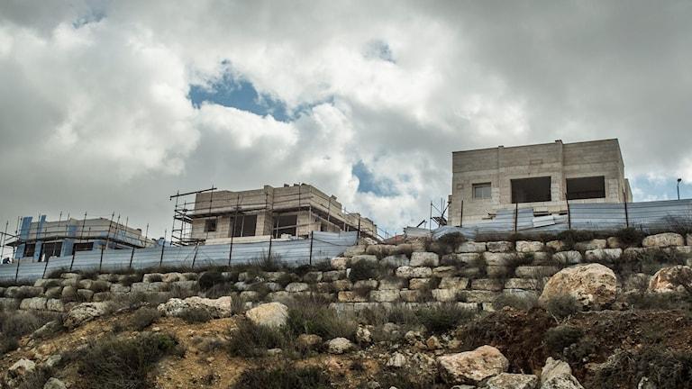 Israelisk Bosättning