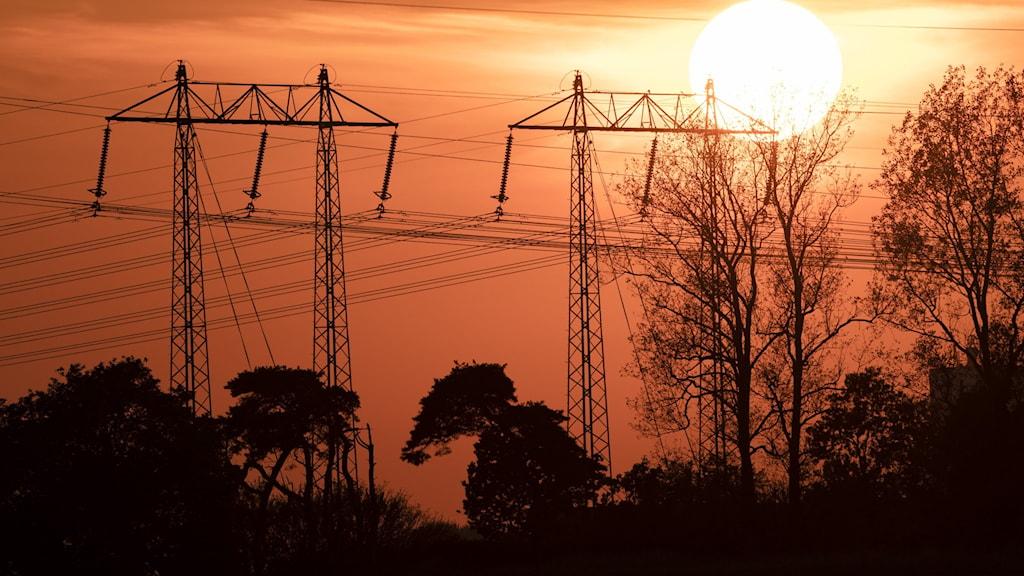 Kraftledningar i solnedgången
