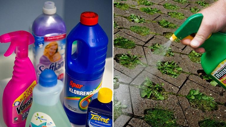 Delad bild: hushållskemikalier och insektmedel