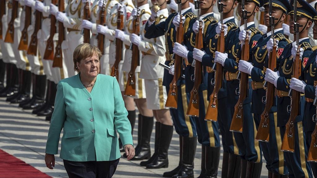 Merkel: Våld måste undvikas