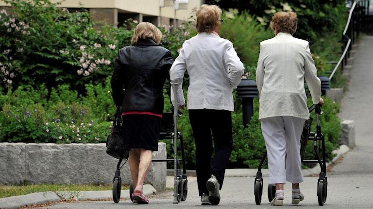 Regeringen vill sätta fokus på äldre och vill ha en äldrelagstiftning.