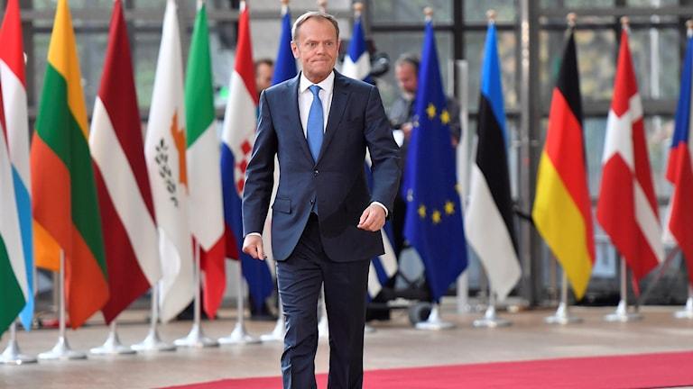 Donald Tusk går framför europeiska flaggor