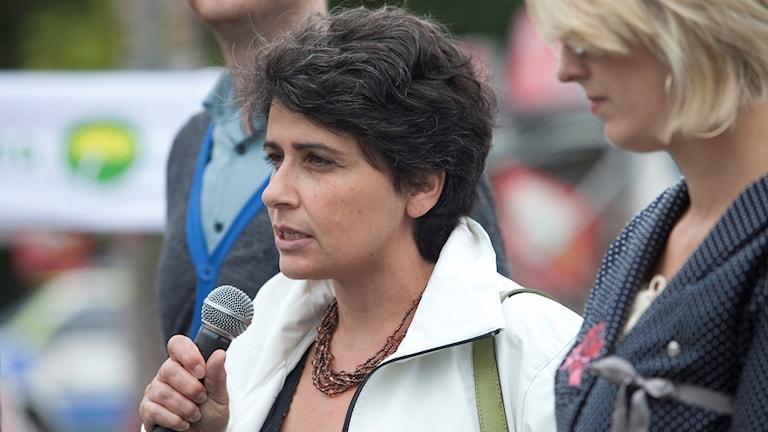 Miljöpartisten och avgående tredje vice talman Esabelle Dingizian.
