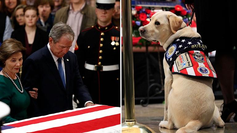 I dag råder landssorg i USA för att hedra den bortgångne tidigare presidenten George Bush den äldre.