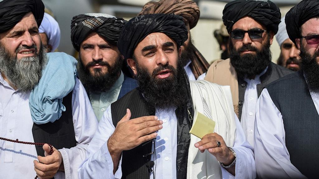 Talibanernas talesperson Zabihullah Mujahid