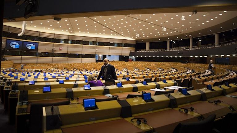 Nästan tomt i EU-parlamentet