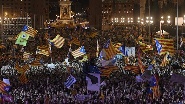 Folkmassa med flaggor.