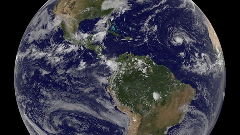 Ovädret Irma syns på en satellitbild som ett vitt fält i mitten av Atlanten.