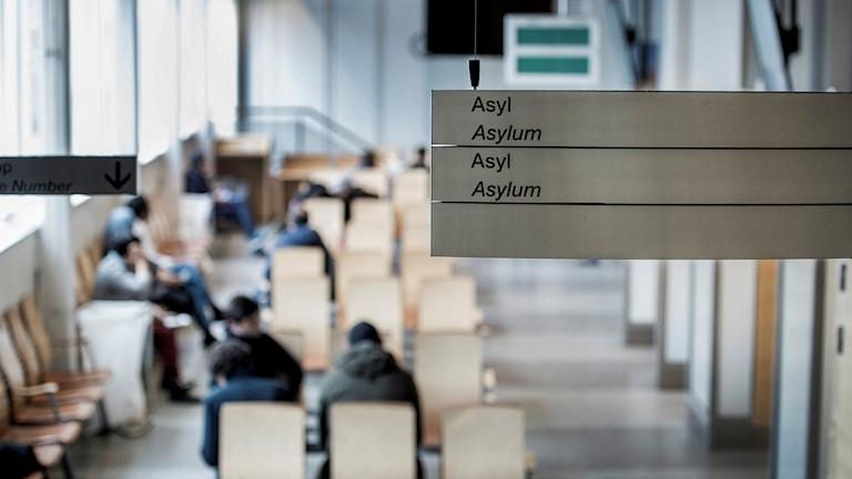 Asylprocess på Migrationsverket i Solna. Väntsal för asylsökande