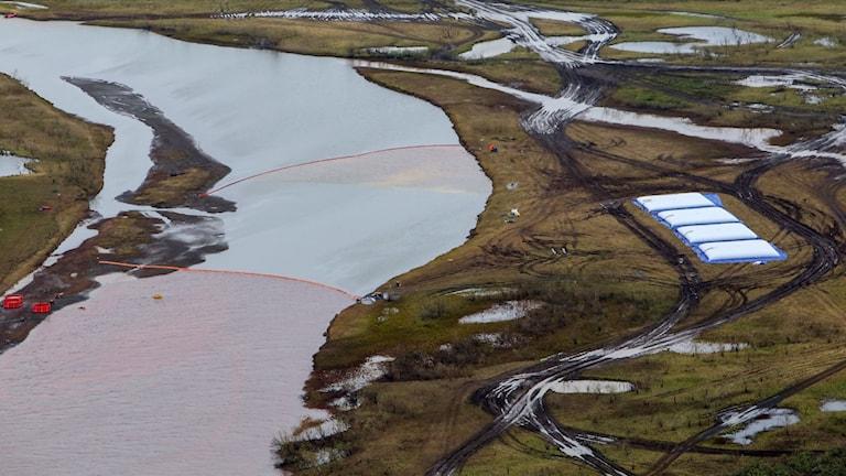 Sanering efter oljeutsläppet i norra SIbirien
