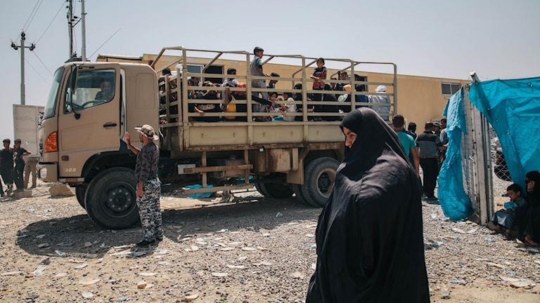 Civila som flytt IS-kontrollerade områden i Irak.