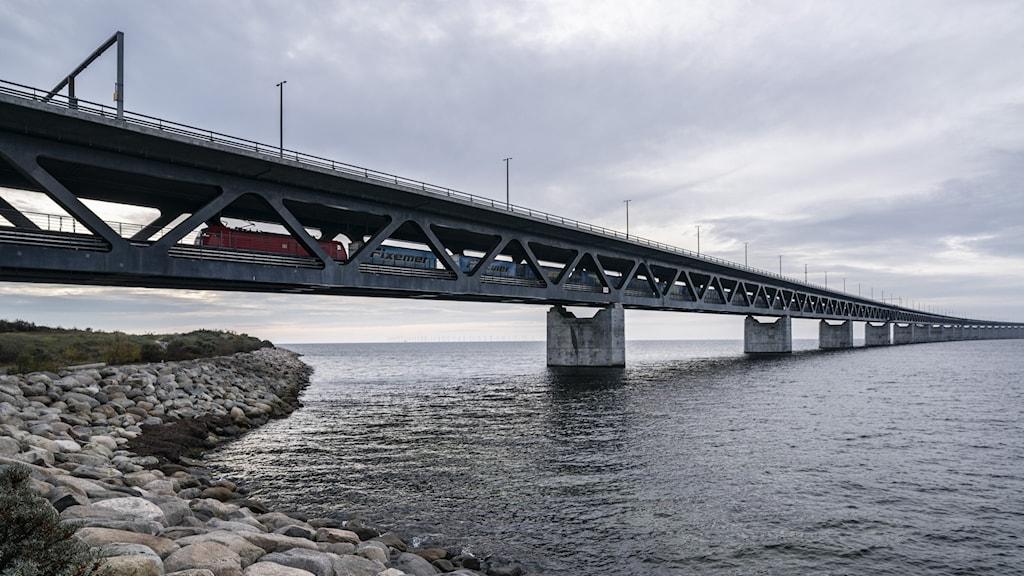 Ett godståg på väg över Öresundsbron vid Lernacken.