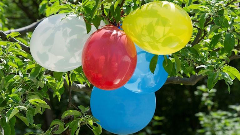 Ballonger kan vara farliga. Nu ska Konsumentverket kontollera om ballonger och andra leksaker till barnkalas har korrekt varningstetxt.