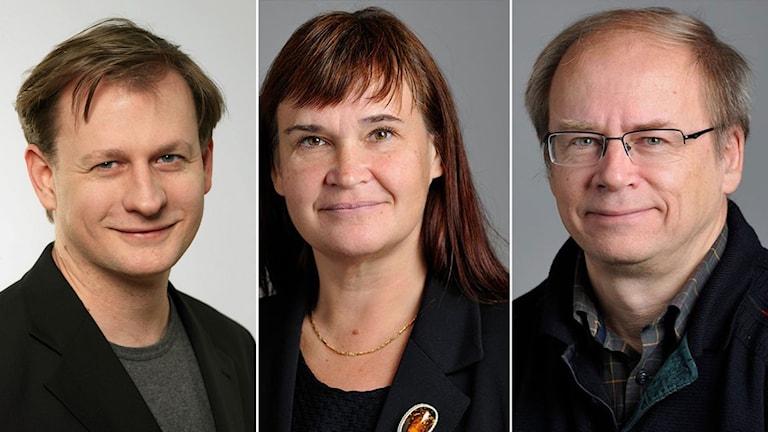Carl Schlyter, Annika Lillemets och Valter Mutt.