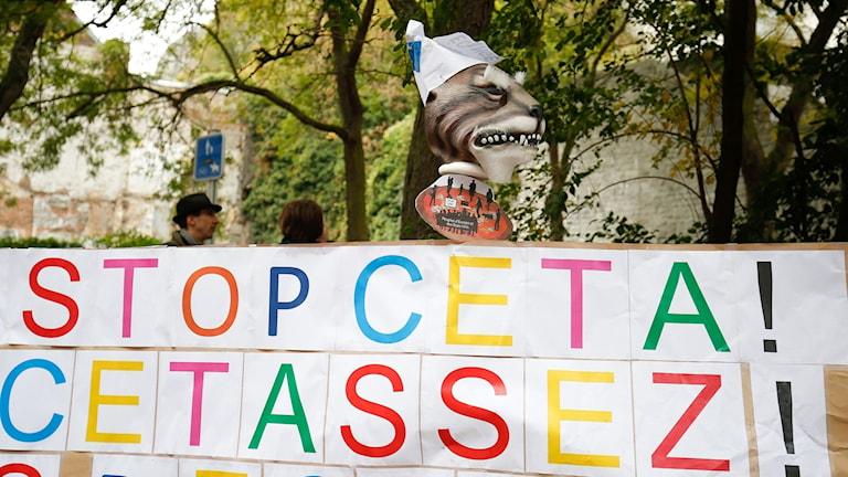 Protester mot handelsavtalet Ceta i Valloniens huvudstad Namur.