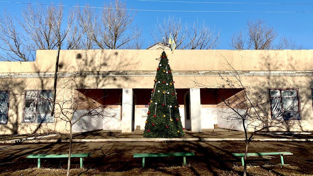 Klubblokalen i Zolote 4 med en julgran.