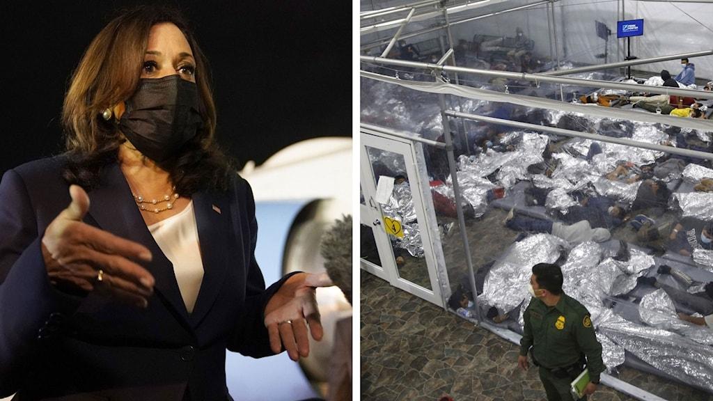 Kamla Harris migranter i en glasbur