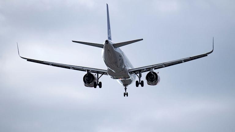 En Airbus A320 Neo ( 320-251N ) tillhörande SAS ( Scandinavian Airlines ) på väg in för landning på Kastrups flygplats utanför Köpenhamn.