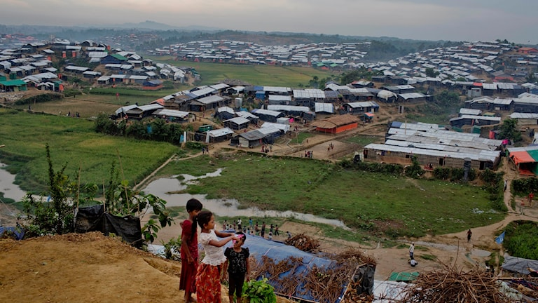 Flyktingar Bangladesh