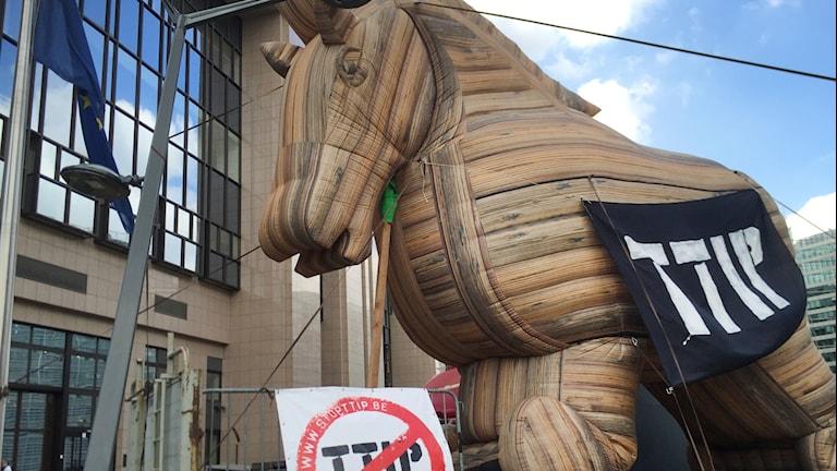 Ceta-avtalet är en trojansk häst, enligt motståndare som demonstrerade i Bryssel. Foto: Wiktor Nummelin/TT.